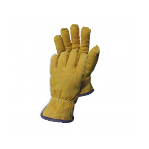 Cold-Room-Glove