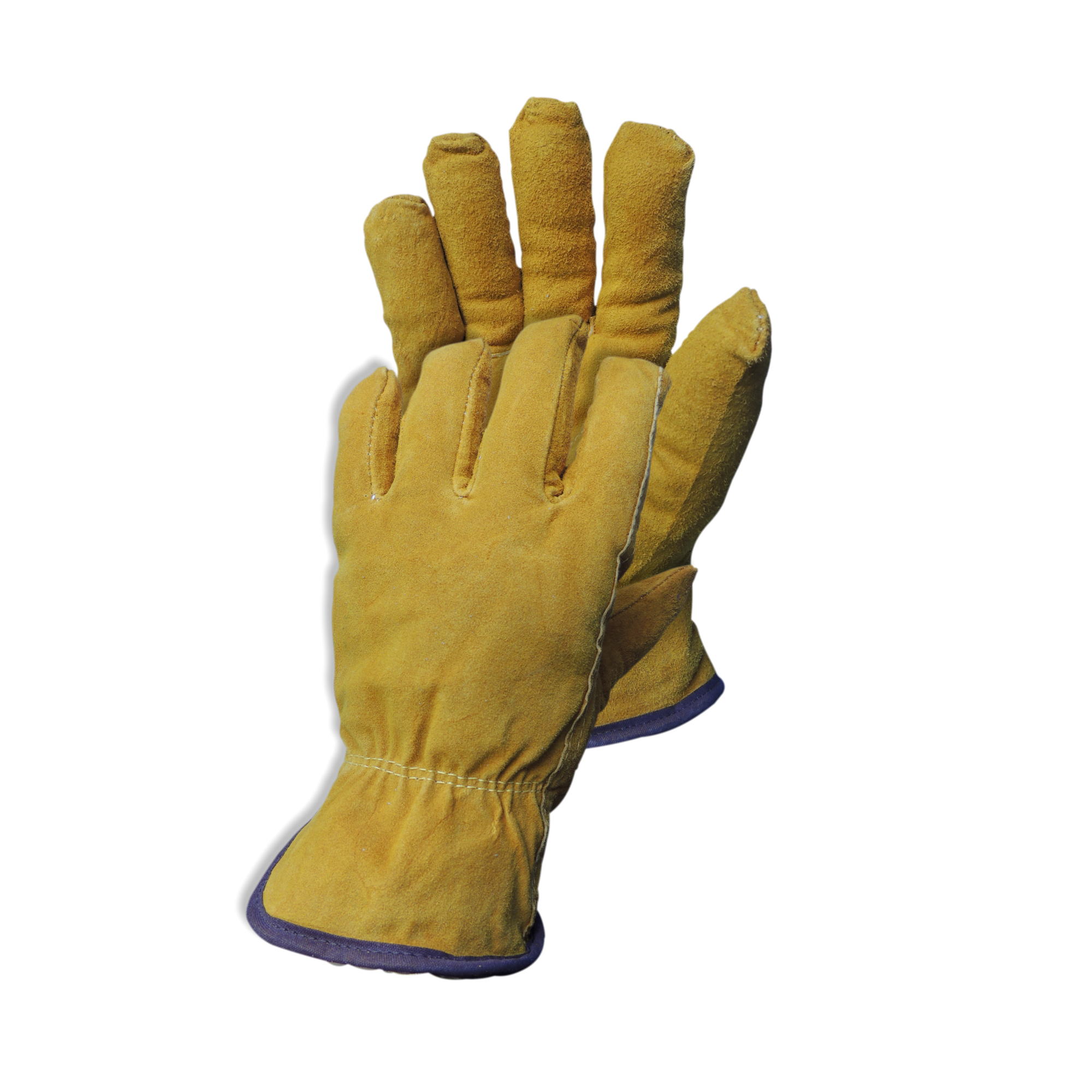 Cold Room Glove