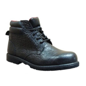 955 Toetectors Safety Boot